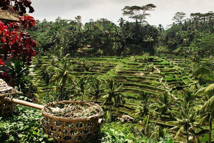 Reisverslag Indonesië